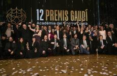 12 Premis Gaudi palmares