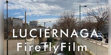 Luciérnagas Firefly Film